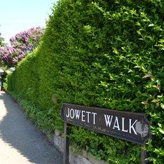 Wolfson room, Jowett walk site, Balliol College